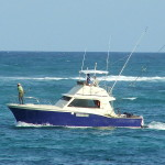 ccommons_sport_fishing_boat-smudger888